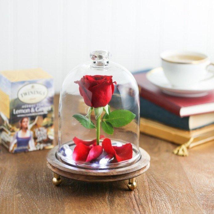 mini-rose-sous-cloche-la-Belle-et-la-Bête-idée-cadeau-copine-jour-Saint-Valentin